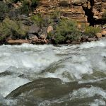 Life Is What You Make It Focus On Success: Rowing The Grand Canyon Part 4
